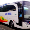 Jadwal Keberangkatan dan Harga Tiket Bus Laju Prima Terbaru