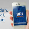 Tutorial dan Panduan Transfer Lewat Internet Banking BRI Terbaru