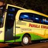 Alamat Kantor Cabang Beserta Nomor Telepon Bus Pahala Kencana di Seluruh Indonesia